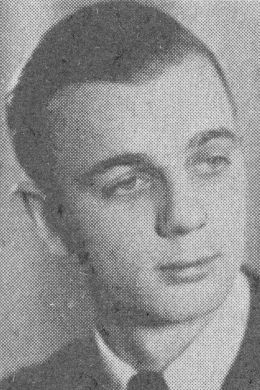 Schmidt Werner