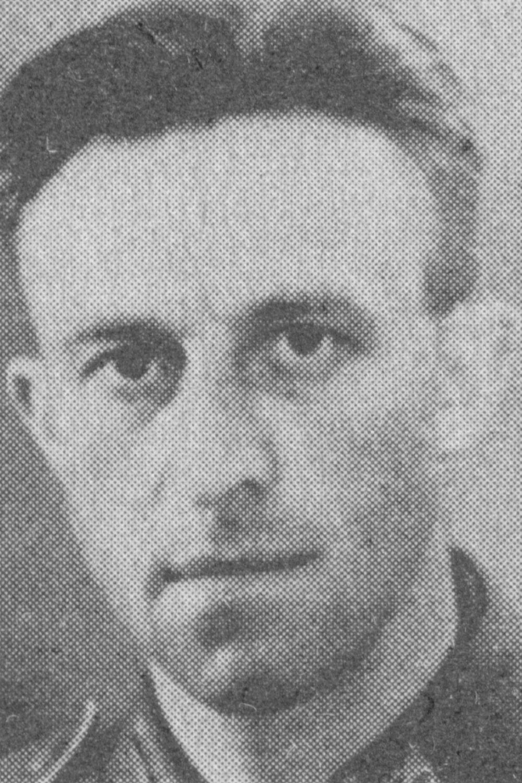 Dreyer Heinrich
