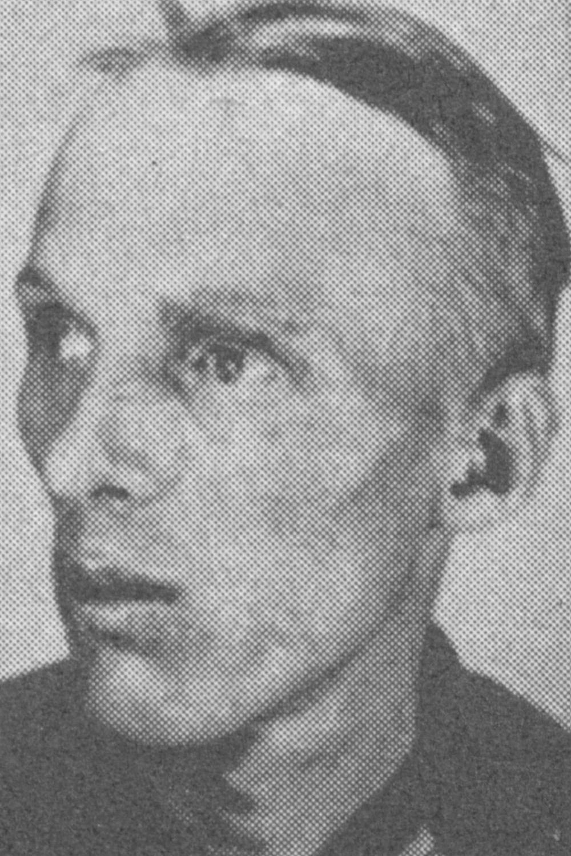 Lubbke Theodor