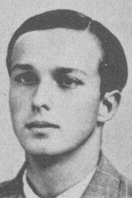Gander Heinrich