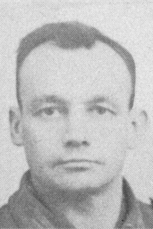 Schaufler Anton