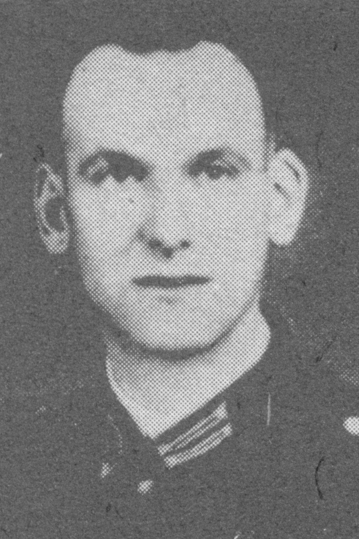 Stelter Heinrich
