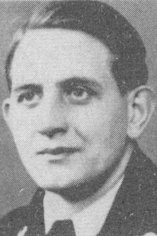 Lippmann Bruno