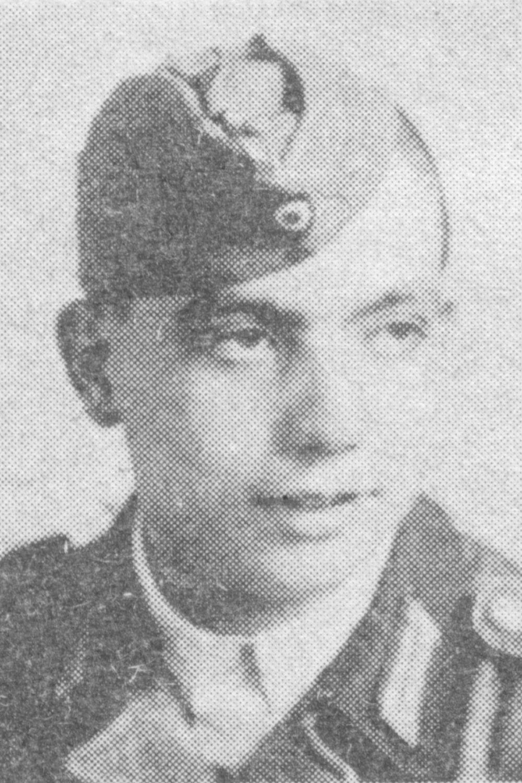 Hansen Hermann