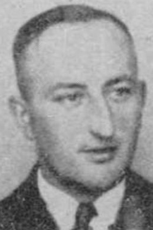 Schneider Willi