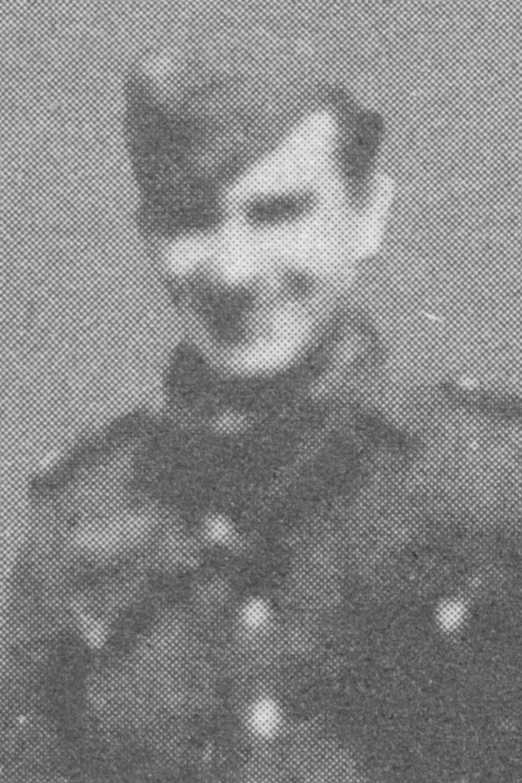Meibohm Hermann