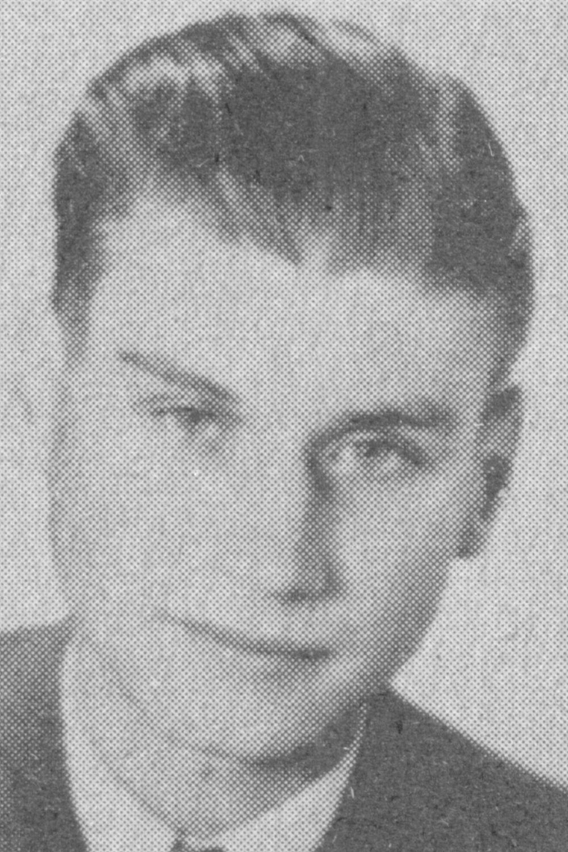 Schmidt Wolfgang