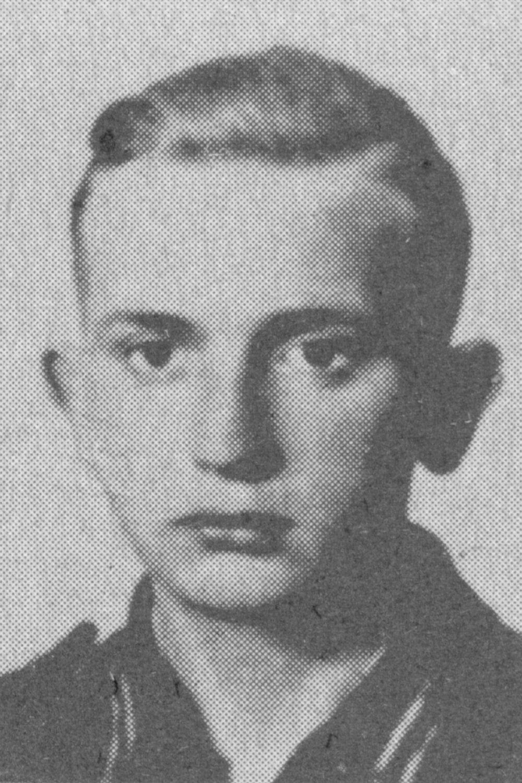 Zimmermann Heinz