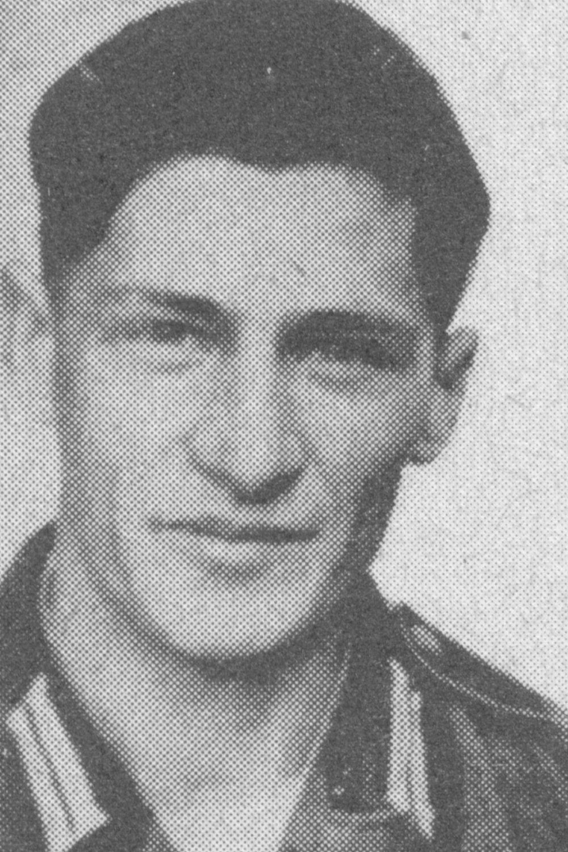 Scheuermann Walter