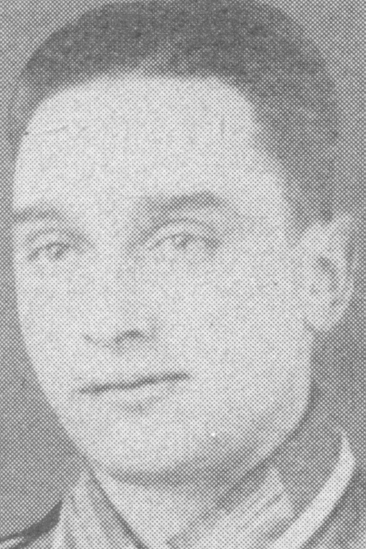 Stenner Ludwig