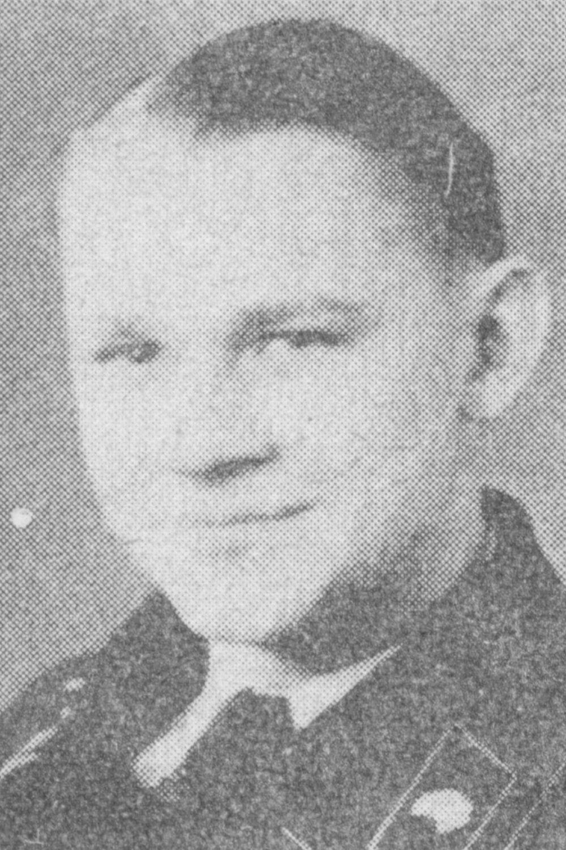 Aumann Walter