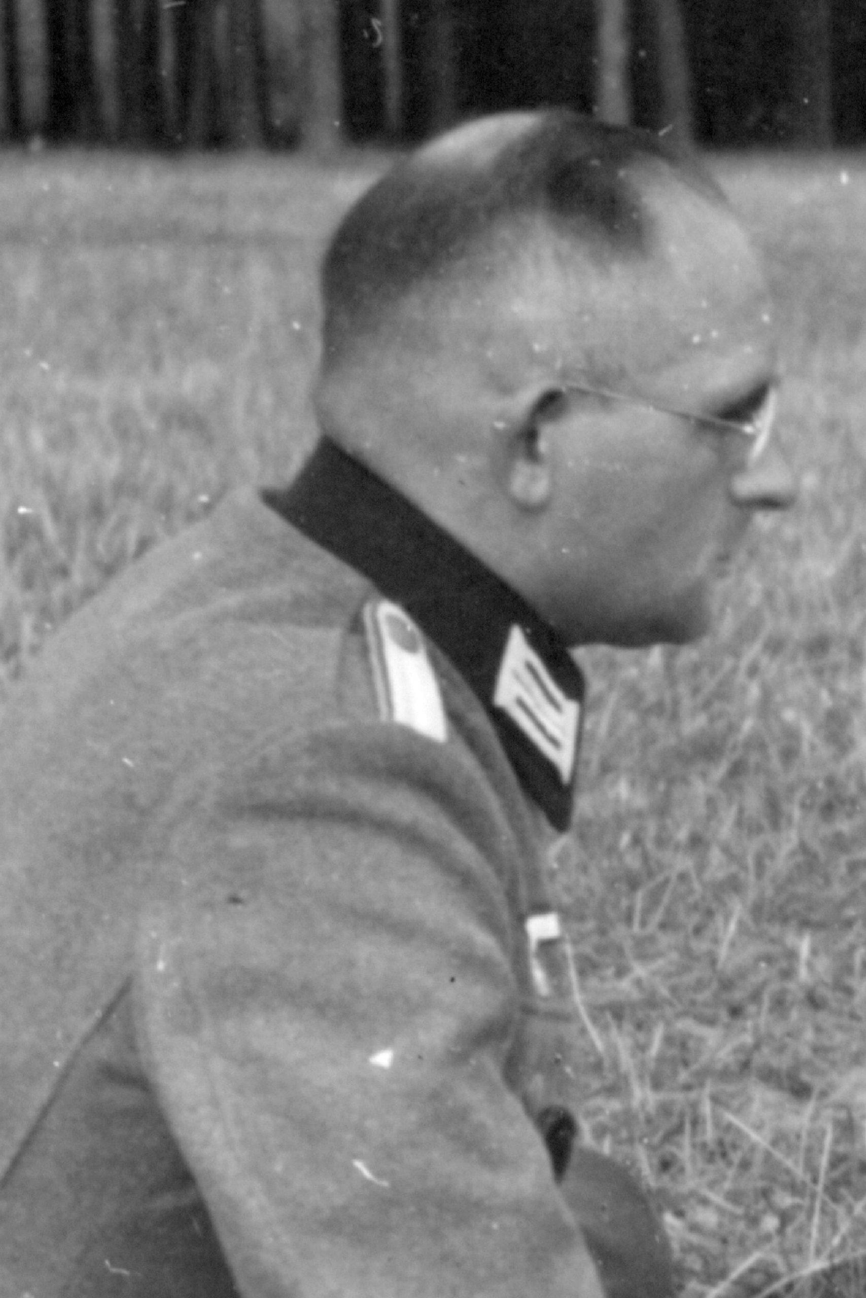 Zimmermann Willi
